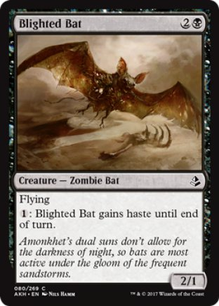 Blighted Bat | Amonkhet