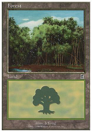 Forest   Battle Royale