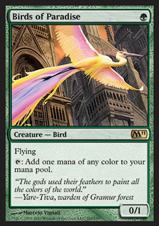 Birds of Paradise | M11