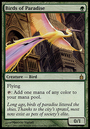 Birds of Paradise | Ravnica