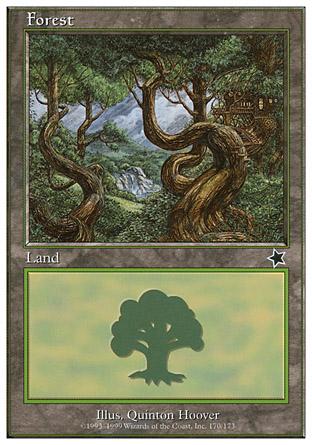 Forest | Starter 1999