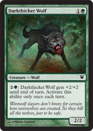 Darkthicket Wolf   Innistrad