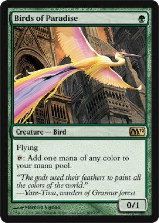 Birds of Paradise | M12